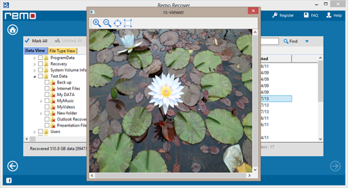 Lost File Recovery Software - Preview Screen